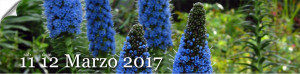 primavera in giardino 11-12 marzo 2017 Milis